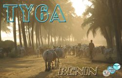 qsl_ty6a